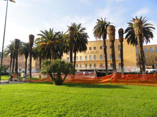 Campus de La Sapienza. Roma. Foto R.Puig