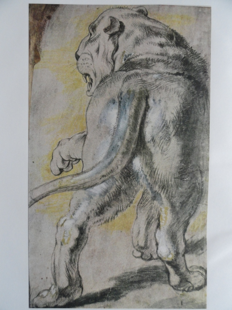 Anatomía artística: últimos ejercicios académicos en Roma (I) (1/6)