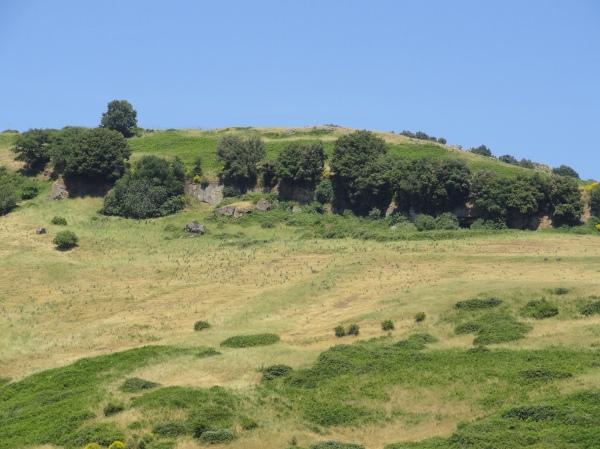 La colina de Tusculum Foto R.Puig
