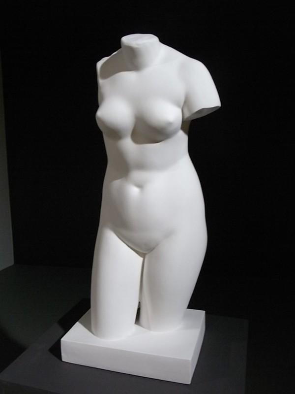 Bruselas.Museo de Bellas Artes. Vaciado del torso de  Cherchell Venus capitolina Foto R.Puig.