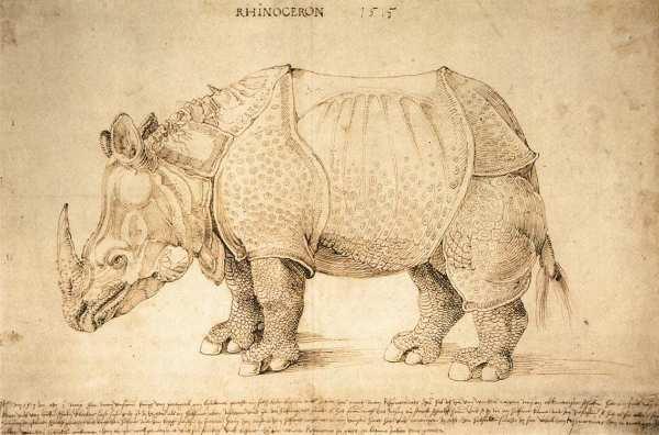 Albrecht Dürer. Ink drawing. British Museum.