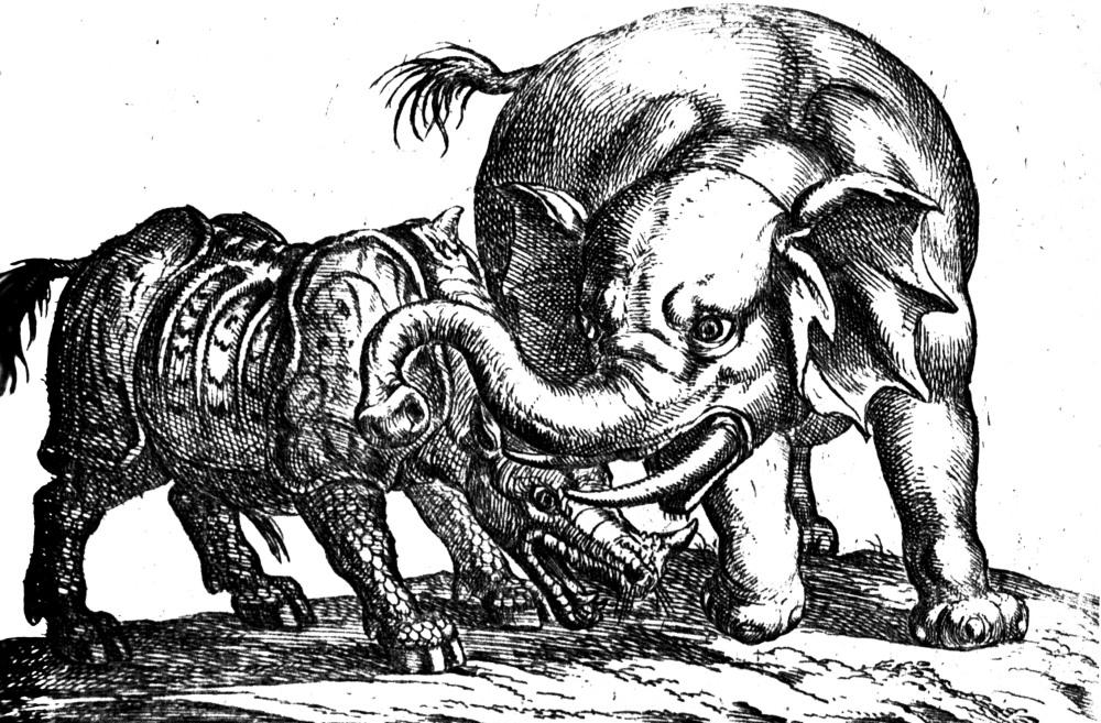 De las desgracias de Ganda, el rinoceronte enfermo que Durero inmortalizó  (6/6)