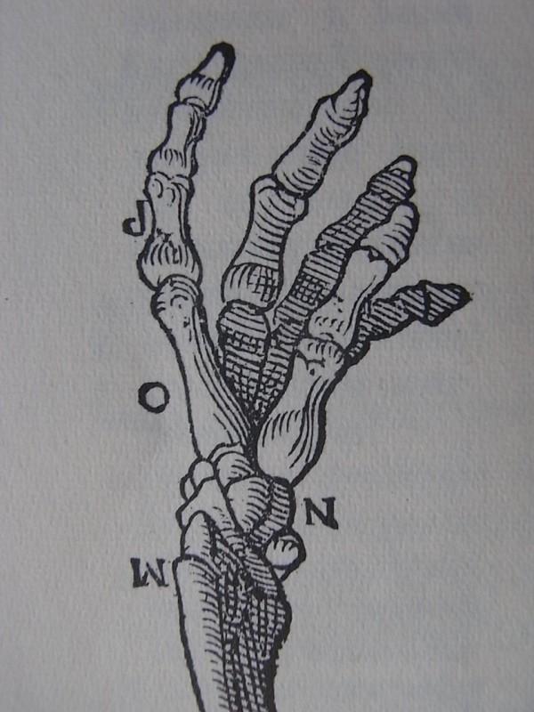 Vesalius en Tabulae Anatomicae.Culture et civilisation. Bruxelles 1965