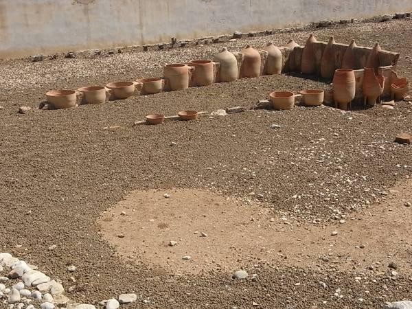 Algunas anforas tipicas. Alfar romano. Els Poblets. Foto R.Puig.