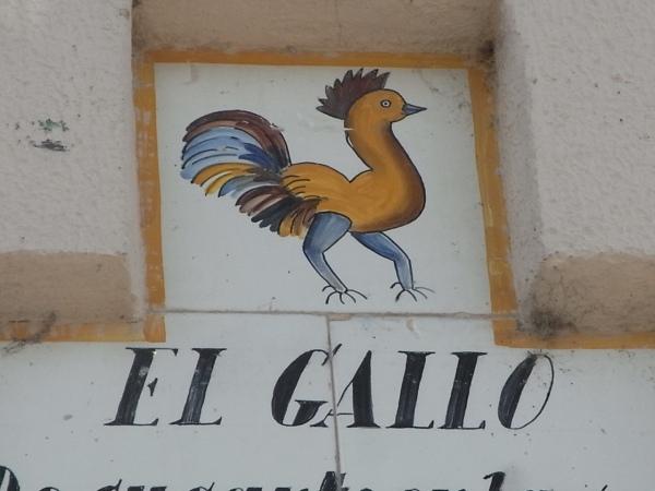 El gallo de la Pasion. Sueca. Foto R.Puig.