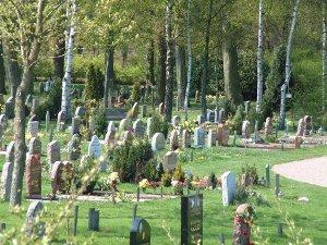 Cementerio musulmán en Malmoe. Fuente Iglesia Sueca.