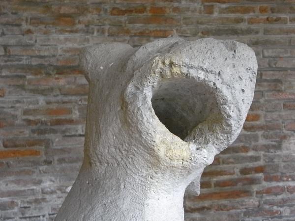 Gargola erecta. Claustro.Les Augustins. Foto R.Puig.