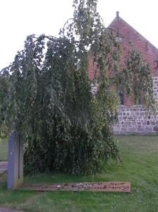 Monumento a los muertos de todas las guerras. Dotlingen. Foto R.Puig.