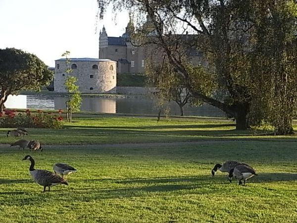 Parque del castillo. Kalmar.Foto R.Puig.