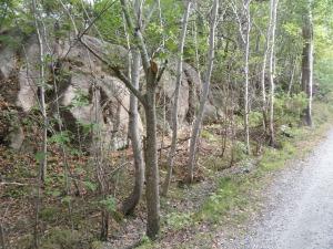 Por los caminos de Tjorn. Foto R.Puig.