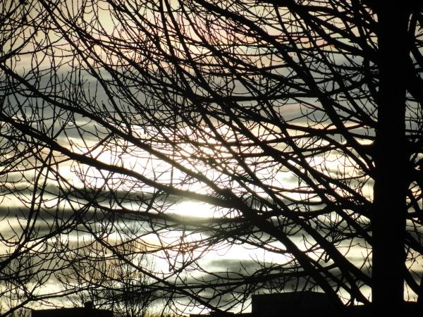 Luz de invierno. Backaplan. Foto R.Puig