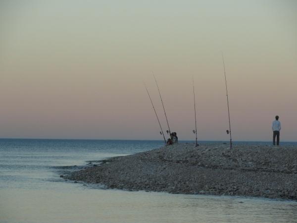 De pesca. Foto R.Puig