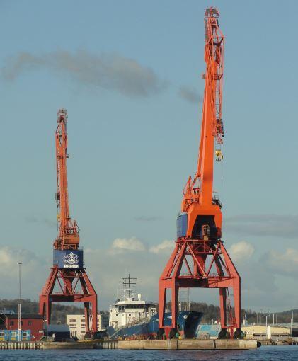 Jirafas en Gotemburgo. Foto R.Puig