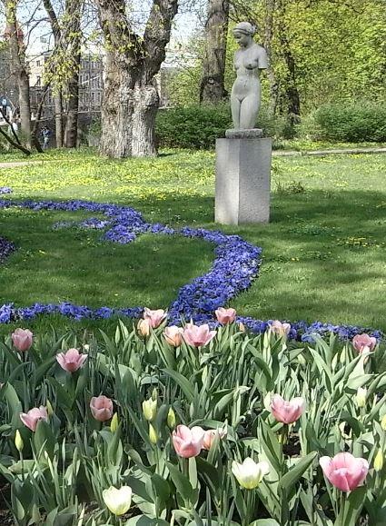 Florecen porque yo las miro. Foto R.Puig