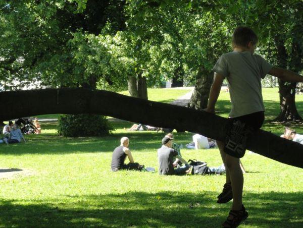 En el parque cualquier sitio es bueno. Foto R.Puig