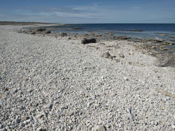 Costa noroeste de Gotland. Foto R.Puig.