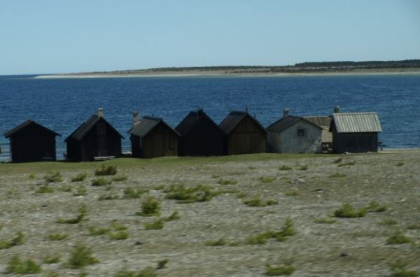 En la orilla. Norte de Gotland.  Foto R.Puig