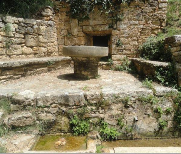 La fuente medieval del Can Puig de la Bellacasa. Bañolas. Foto R.Puig