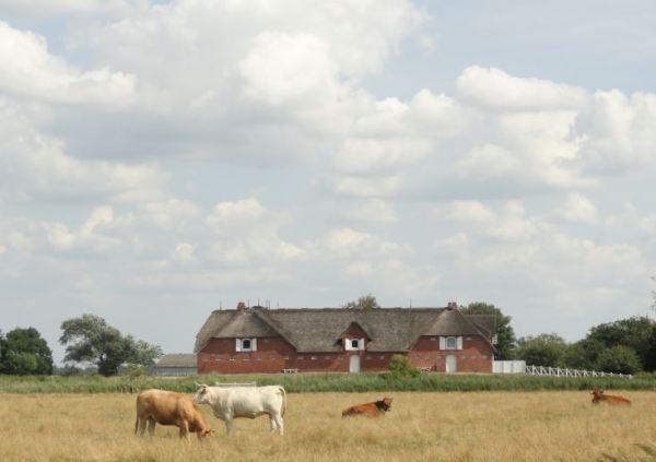 El hostal de Seebüll Hof o granja de Hülltoft. Foto R.Puig