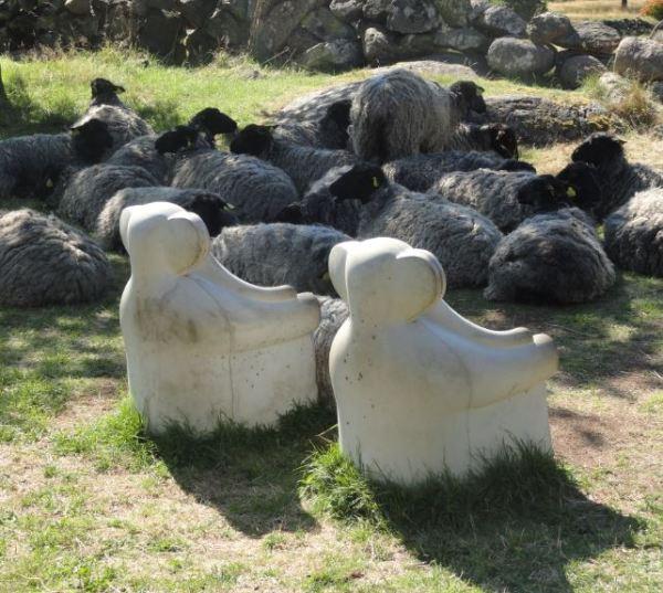 Ovejas junto a las sillas elefante de Ylva Kullenberg.Suecia. Pilane 2014. Foto R.Puig