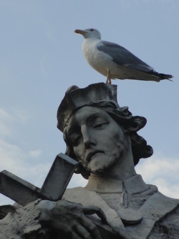 San Juan Nepomuceno reposos de palomas en Ponte Milvio. Foto R.Puig