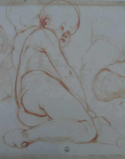 Estudio de putto. Jacopo Pontormo. Uffizi.