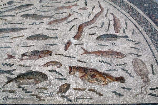 Peces mediterráneos.  Mosaico romano. Museo del Bardo. Túnez. Fuente Wikimedia