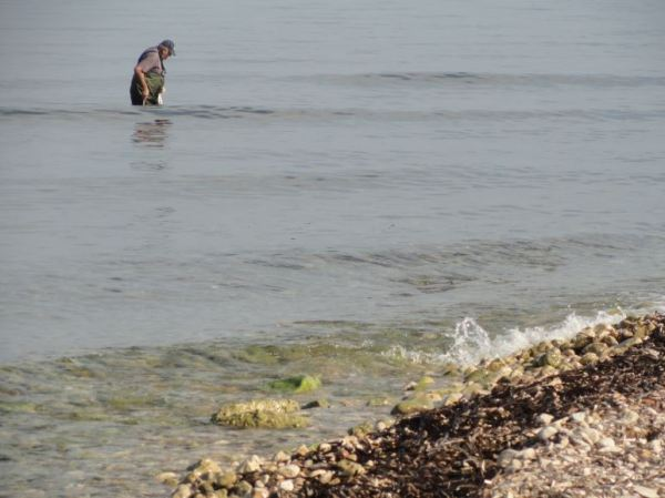 Pesca del pulpo. Foto R.Puig