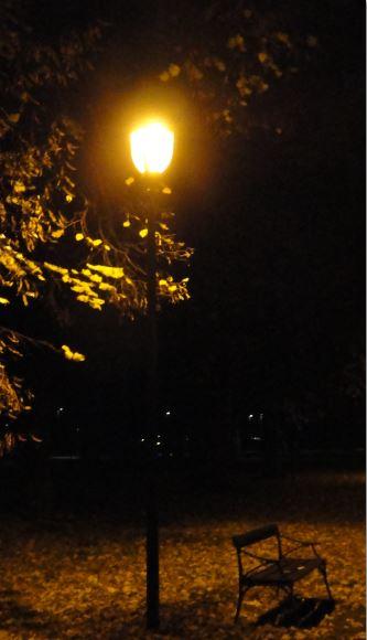 Por el parque. Foto R.Puig