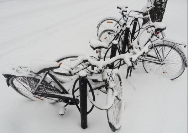 Las bicicletas son para el verano. Foto R.Puig