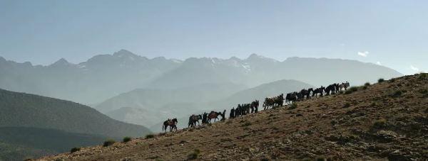 Sobre las montañas del Atlas. Loin des hommes. David Oelhoffen