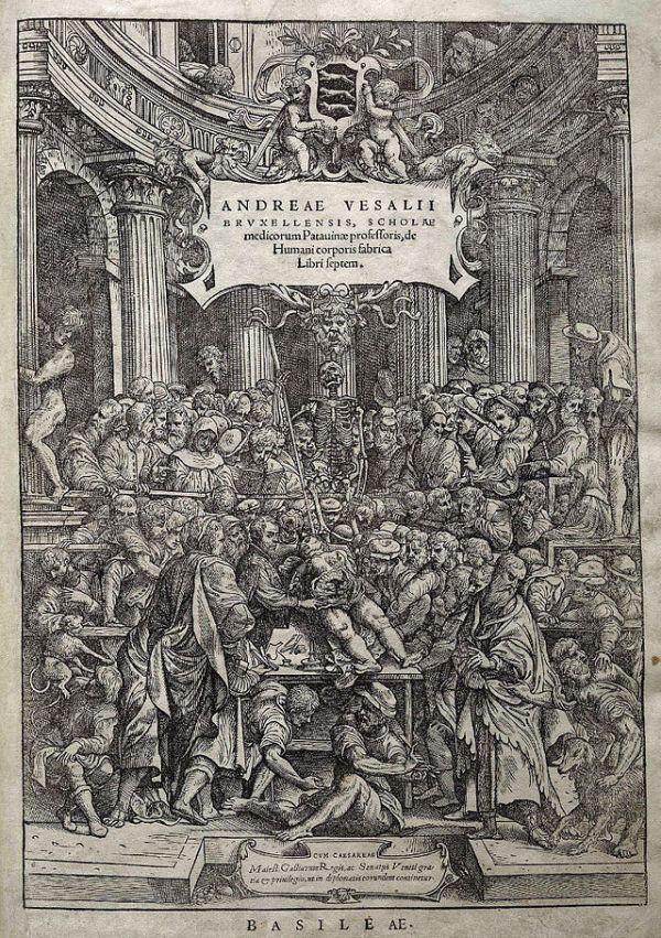 Vesalius. De Humani Corporis Fabrica. 1543. Portada