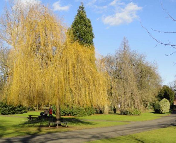 Abbey Park. Foto R.Puig