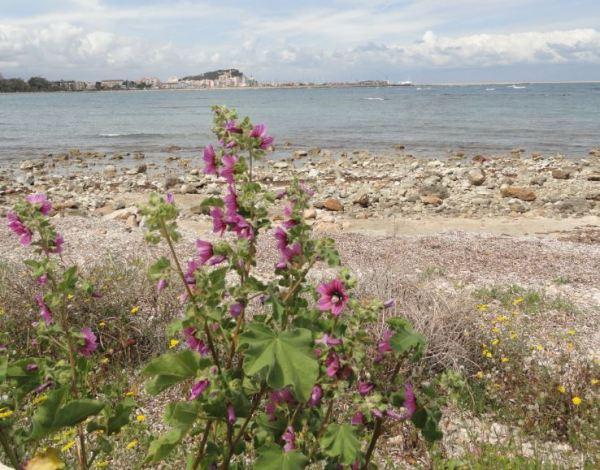 Por las orillas de las Rotes. Denia. Foto R.Puig
