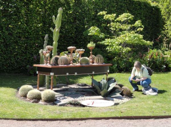 Para saber de cactus. Foto R.Puig