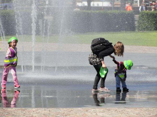 Verdes mojados. Foto R.Puig