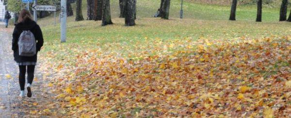 Días cálidos de otoño. Foto R.Puig