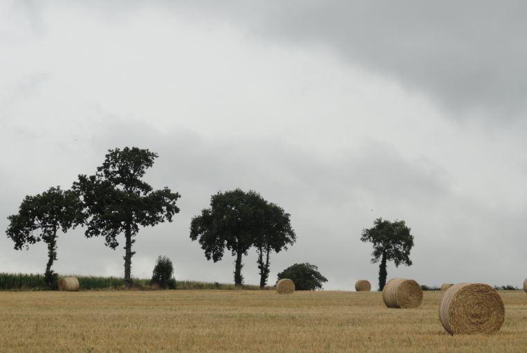 Trashumancias 2015 (VII). Normandía: Lassy y la saga de los Lacy (4/6)