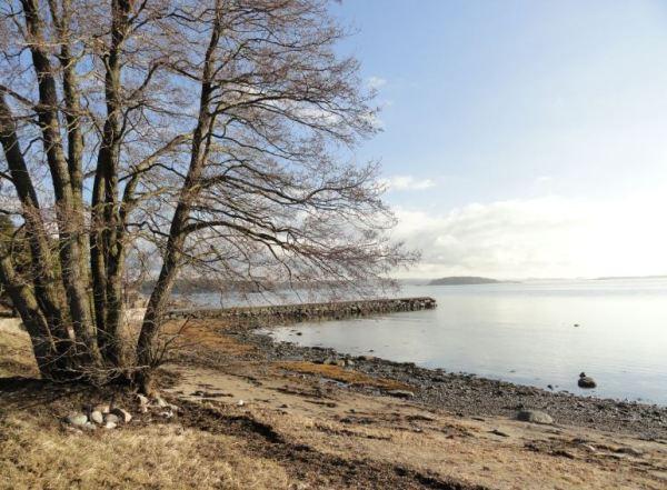 Tarde de febrero frente al mar. Foto R.Puig
