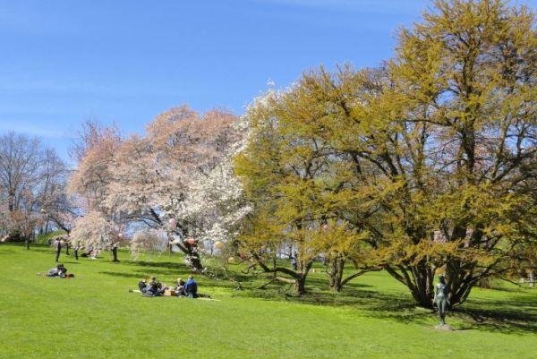 Pícnic en el Botánico. Gotemburgo. Foto R.Puig