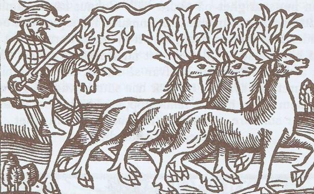 Xilograbado en Olaus Magnus Historia de Gentibus Septentrionalibus, Roma 1555. Rebaño de renos