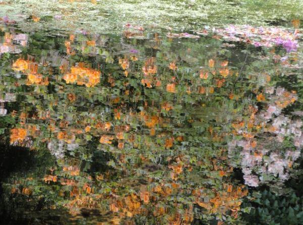 A Monet le hubiera gustado. Foto R.Puig