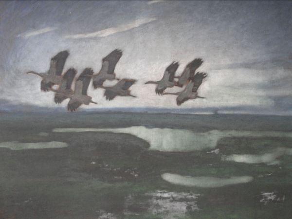Bandada de cigüeñas. Ernst Norlinds. Foto R.Puig