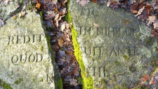Sic redit in nihilum quod fuit ante nihil. En las ruinas de Rådasjön. Foto R.Puig