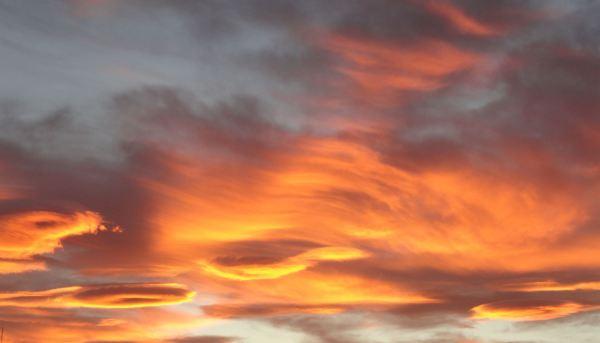 Cabelleras en el cielo. Foto R.Puig