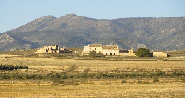 Entre Pinoso y Monóvar. Foto R. Puig