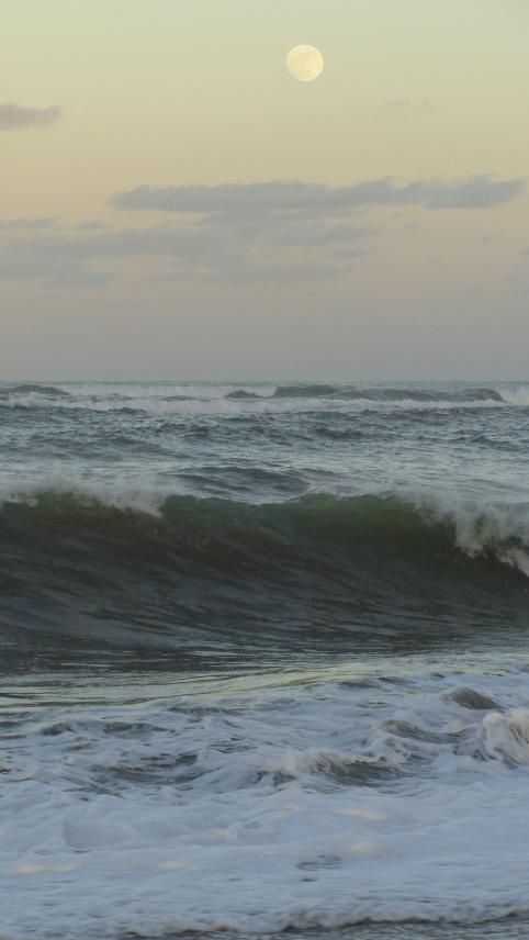 Marea, vainilla y nata. Foto R.Puig