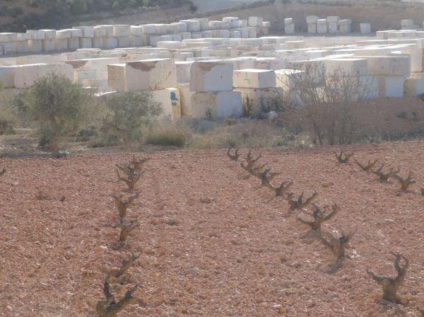 Mármol, olivos y viñedos. Pinoso. Foto R.Puig