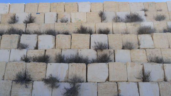 Muro de mármol. Canteras de Pinoso. Foto R.Puig