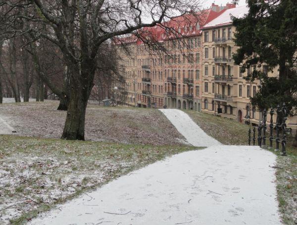 Nieve alfombra. Foto R.Puig